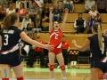 Sverige_Danmark_Volley_10