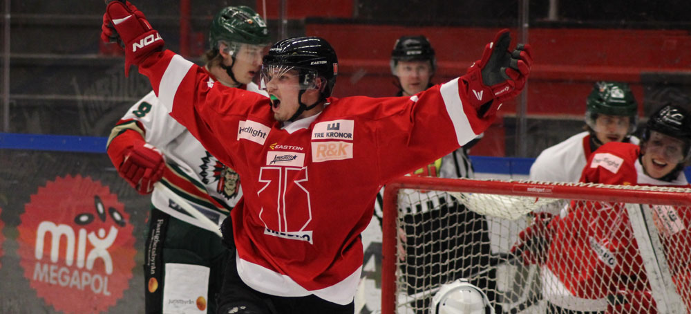 Hockey_Banner_1