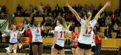 Volley_13_Banner