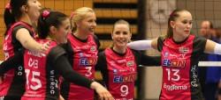 Volley_Banner_5