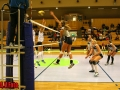 rebro_Volley_12