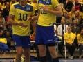 Volleyboll_04.jpg